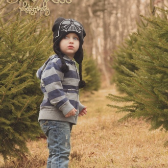 tree-shopping-2012-020-online